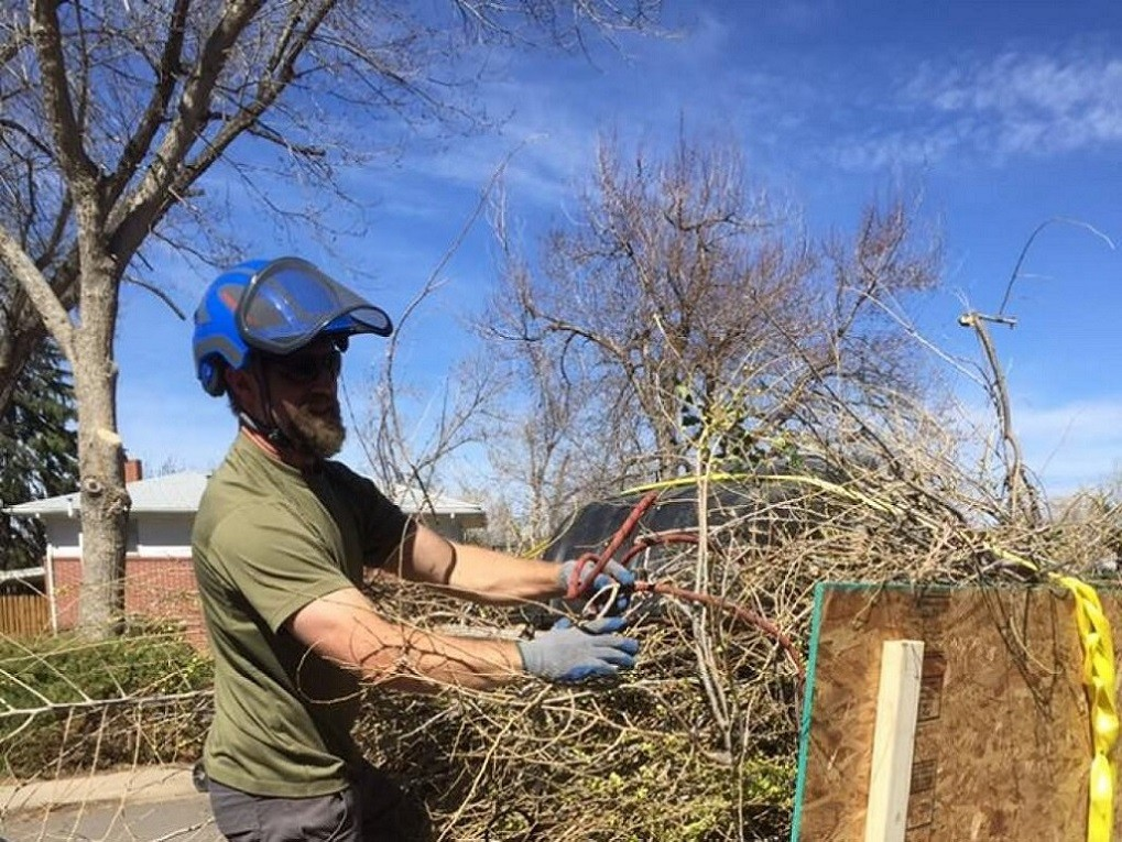 Services-Scottsdale Tree Trimming and Stump Grinding Services-We Offer Tree Trimming Services, Tree Removal, Tree Pruning, Tree Cutting, Residential and Commercial Tree Trimming Services, Storm Damage, Emergency Tree Removal, Land Clearing, Tree Companies, Tree Care Service, Stump Grinding, and we're the Best Tree Trimming Company Near You Guaranteed!