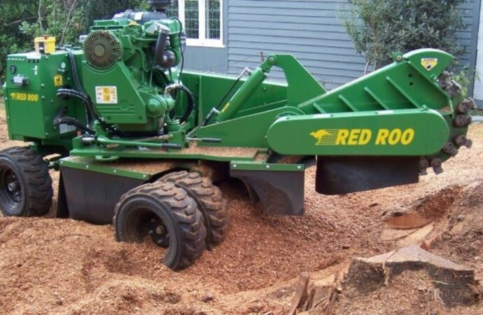 Stump-Grinding-Scottsdale Tree Trimming and Stump Grinding Services-We Offer Tree Trimming Services, Tree Removal, Tree Pruning, Tree Cutting, Residential and Commercial Tree Trimming Services, Storm Damage, Emergency Tree Removal, Land Clearing, Tree Companies, Tree Care Service, Stump Grinding, and we're the Best Tree Trimming Company Near You Guaranteed!