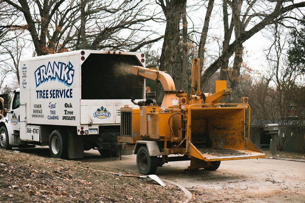 Cave Creek-Scottsdale Tree Trimming and Stump Grinding Services-We Offer Tree Trimming Services, Tree Removal, Tree Pruning, Tree Cutting, Residential and Commercial Tree Trimming Services, Storm Damage, Emergency Tree Removal, Land Clearing, Tree Companies, Tree Care Service, Stump Grinding, and we're the Best Tree Trimming Company Near You Guaranteed!